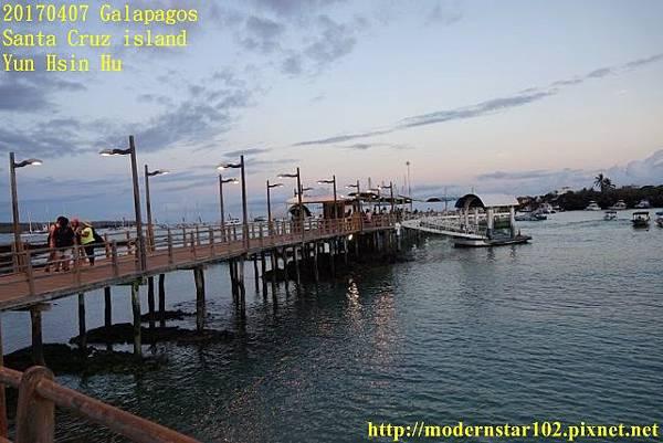 1060407 Santa Cruz islandDSC08477 (640x427).jpg