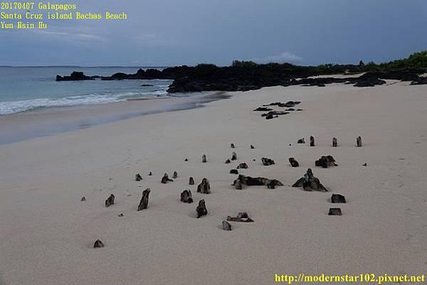 1060408 Bachas BeachDSC08721 (640x427).jpg