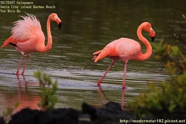 1060408 Bachas Beach894A3855 (640x427).jpg