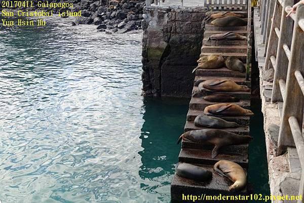 1060411 San Cristobal islandDSC01402 (640x427).jpg