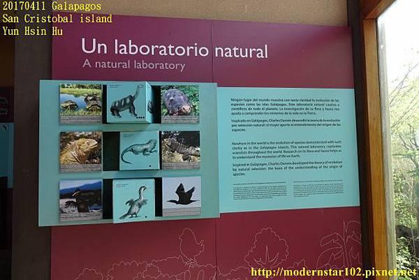 1060411 San Cristobal islandDSC01488 (640x427).jpg