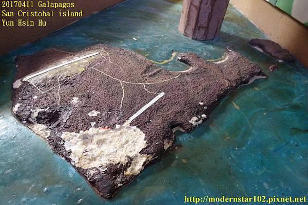 1060411 San Cristobal islandDSC01547 (640x427).jpg