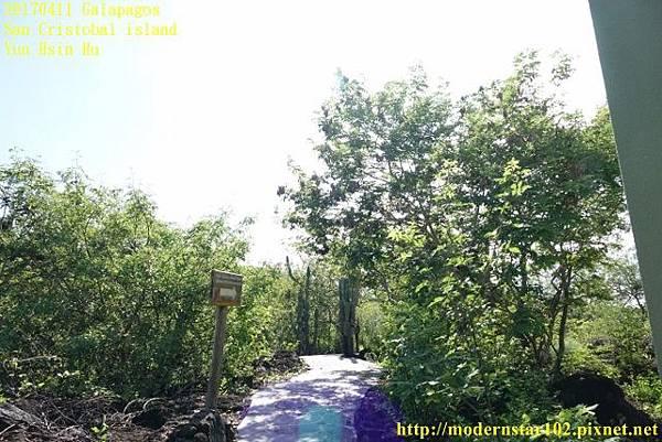 1060411 San Cristobal islandDSC01584 (640x427).jpg