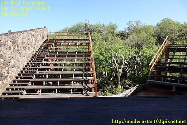 1060411 San Cristobal islandDSC01597 (640x427).jpg