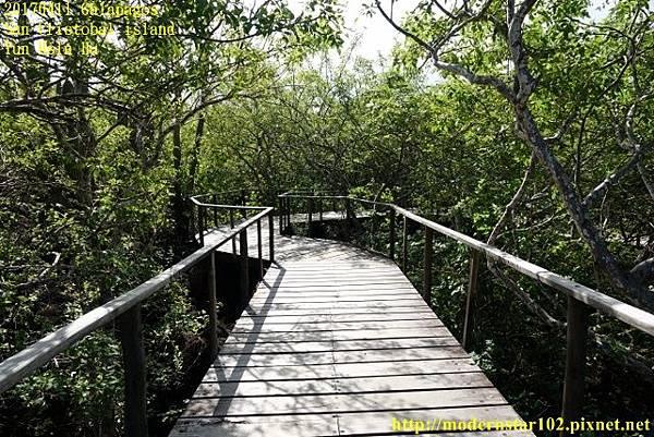 1060411 San Cristobal islandDSC01609 (640x427).jpg