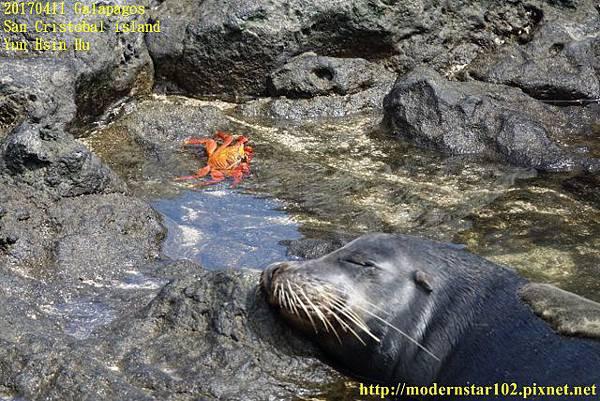 1060411 San Cristobal islandDSC01656 (640x427).jpg