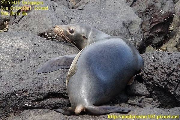 1060411 San Cristobal islandDSC01683 (640x426).jpg