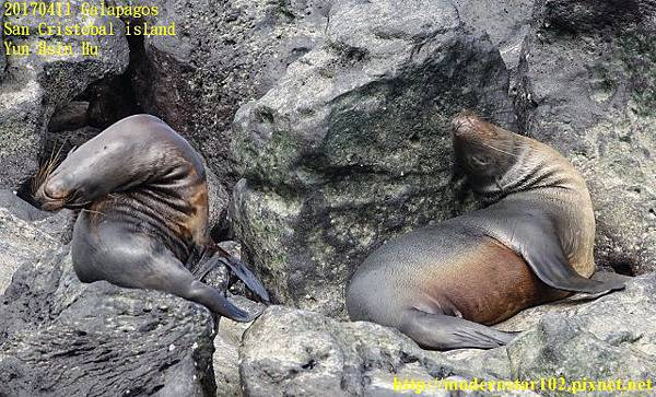 1060411 San Cristobal islandDSC01693 (640x387).jpg