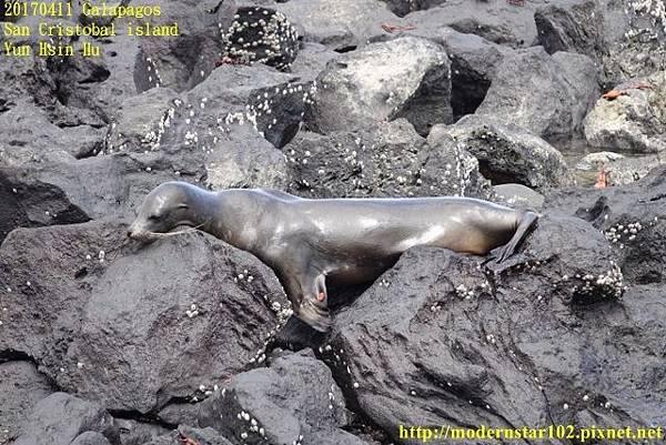 1060411 San Cristobal islandDSC01732 (640x427).jpg