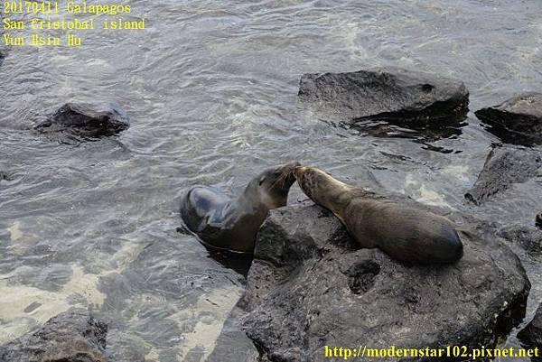 1060411 San Cristobal islandDSC01774 (640x427).jpg