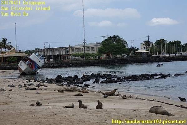 1060411 San Cristobal islandDSC01780 (640x427).jpg