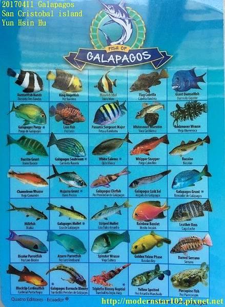 1060411 San Cristobal islandimage1 (1) (468x640).jpg