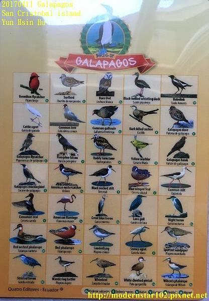 1060411 San Cristobal islandimage2 (443x640).jpg