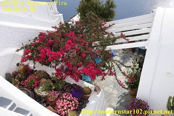 1060611 FiraDSC03212 (640x427).jpg