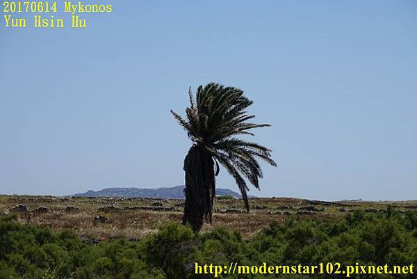 1060614 MykonosDSC05213 (640x427).jpg