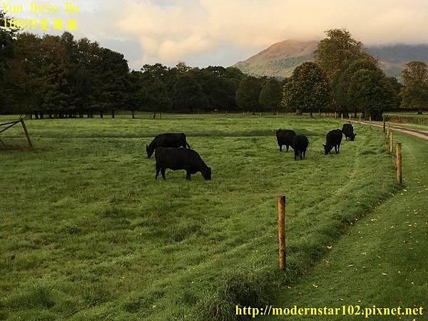 1060928愛爾蘭IMG_3032 (640x480).jpg
