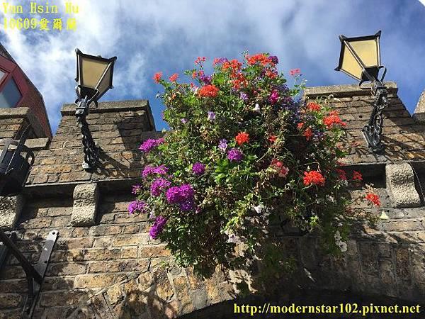 1060929愛爾蘭3IMG_3783 (640x480).jpg