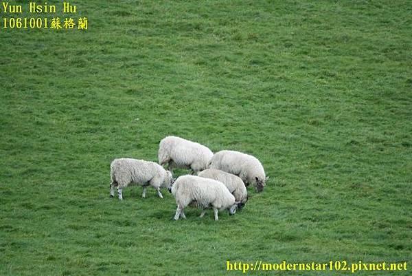 1061001蘇格蘭DSC00148 (640x427).jpg