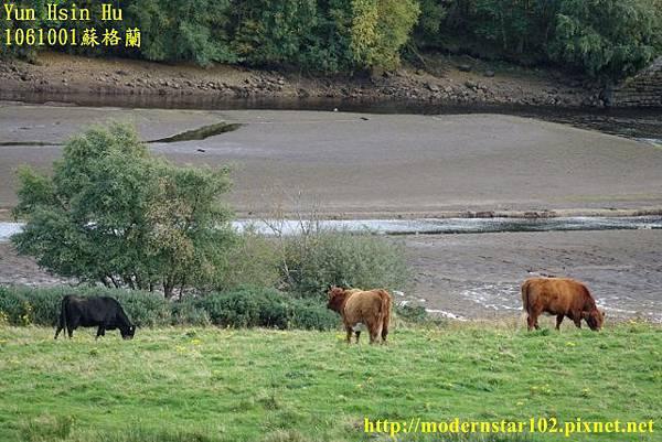 1061001蘇格蘭DSC00139 (640x427).jpg