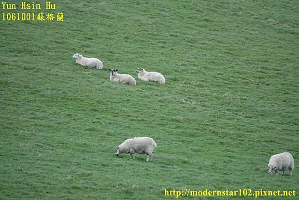 1061001蘇格蘭DSC00149 (640x427).jpg