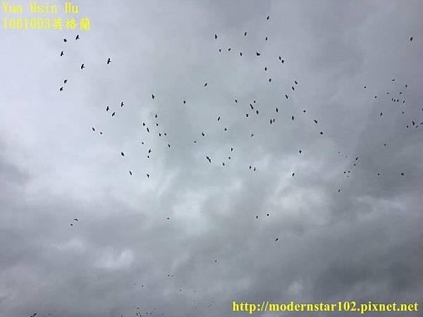 1061003英格蘭IMG_5916 (640x480).jpg