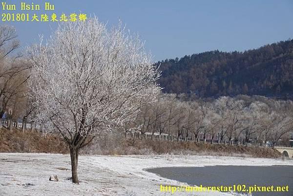 20170103-11雪鄉DSC09669 (640x427).jpg