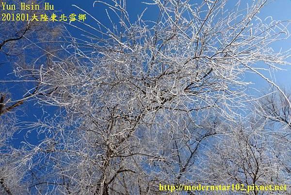 20170103-04霧淞島DSC09050 (640x427).jpg