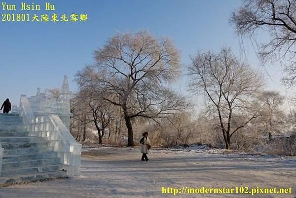 20170105霧淞DSC09516 (640x427).jpg