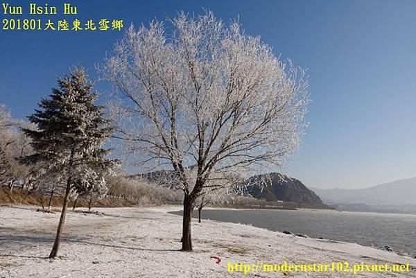 20170105霧淞DSC09594 (640x427).jpg