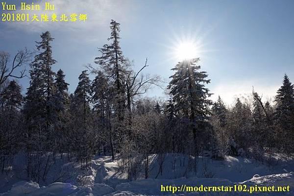 201801雪鄉1DSC09775 (640x427).jpg