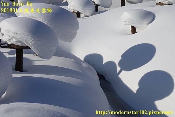 201801雪鄉1DSC09867 (640x426).jpg