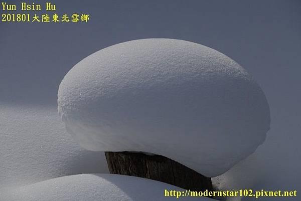 201801雪鄉2DSC00455 (640x427).jpg