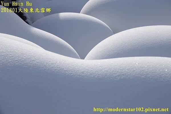 201801雪鄉2DSC00522 (640x427).jpg