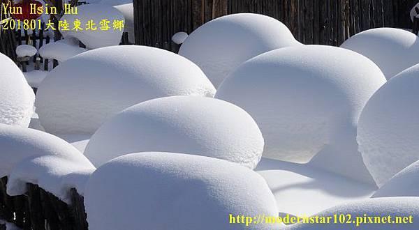 201801雪鄉2DSC00605 (640x352).jpg