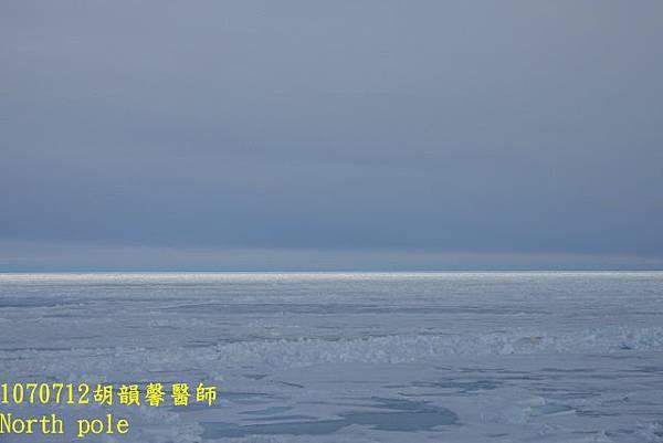 1070712 North pole yellowDSC03295 (640x427).jpg