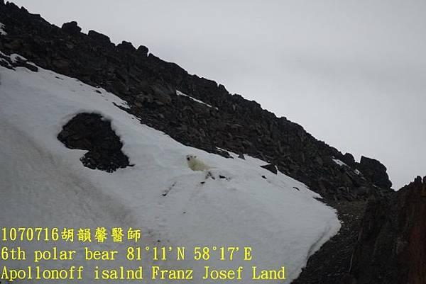 1070716 Franz Josef landDSC06890 (640x427).jpg