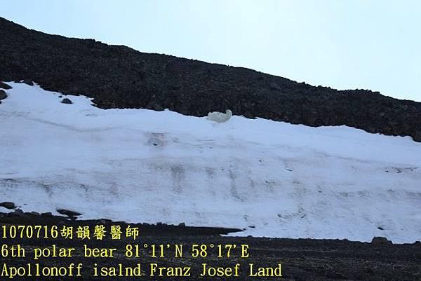 1070716 Franz Josef land894A1596 (640x427).jpg