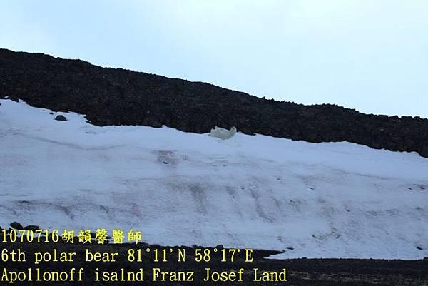 1070716 Franz Josef land894A1610 (640x427).jpg