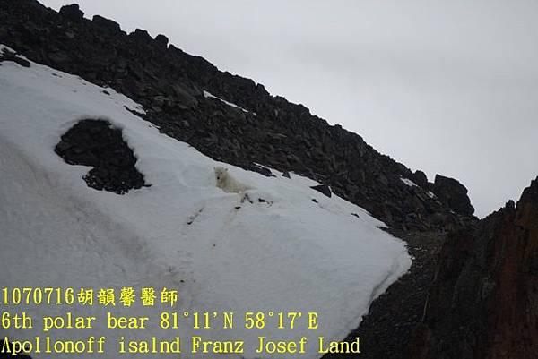 1070716 Franz Josef landDSC06883 (640x427).jpg