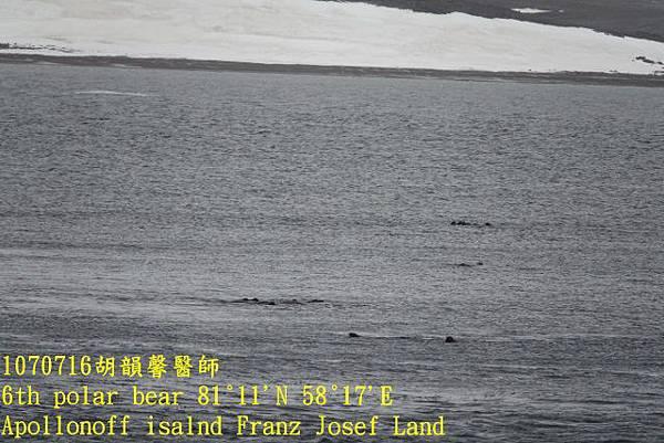 1070716 Franz Josef landDSC06894 (640x427).jpg