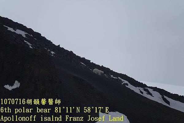 1070716 Franz Josef landDSC06900 (640x427).jpg