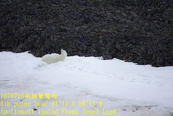 1070716 Franz Josef landDSC07187 (640x427).jpg