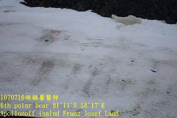 1070716 Franz Josef landDSC07211 (640x427).jpg