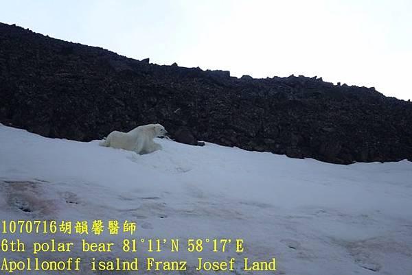 1070716 Franz Josef landDSC07215 (640x427).jpg