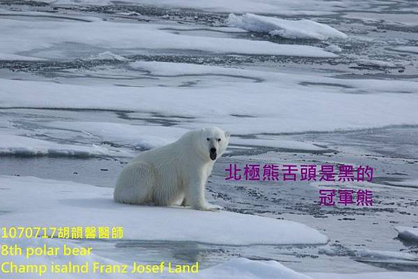 1070717 Champ island Franz Josef land894A1882 (640x427).jpg