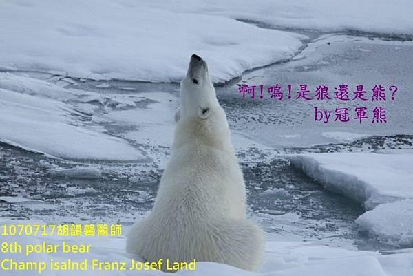 1070717 Champ island Franz Josef land894A1740 (640x427).jpg