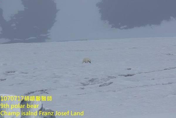 1070717 Champ island Franz Josef land894A2035 (640x427).jpg