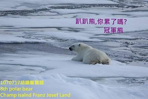 1070717 Champ island Franz Josef land894A1909 (640x427).jpg