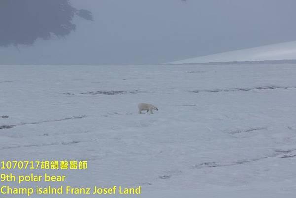 1070717 Champ island Franz Josef land894A2054 (640x427).jpg