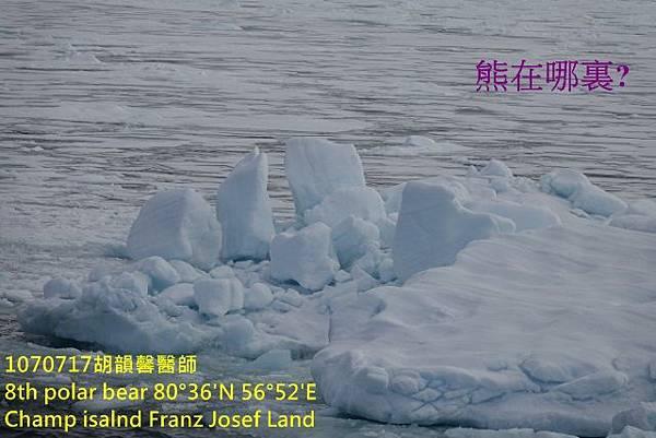 1070717 Champ island Franz Josef landDSC07414 (640x427).jpg